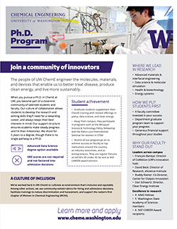 PhD program flyer preview